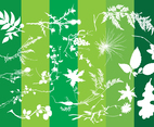 Plants Silhouettes Nature Graphics