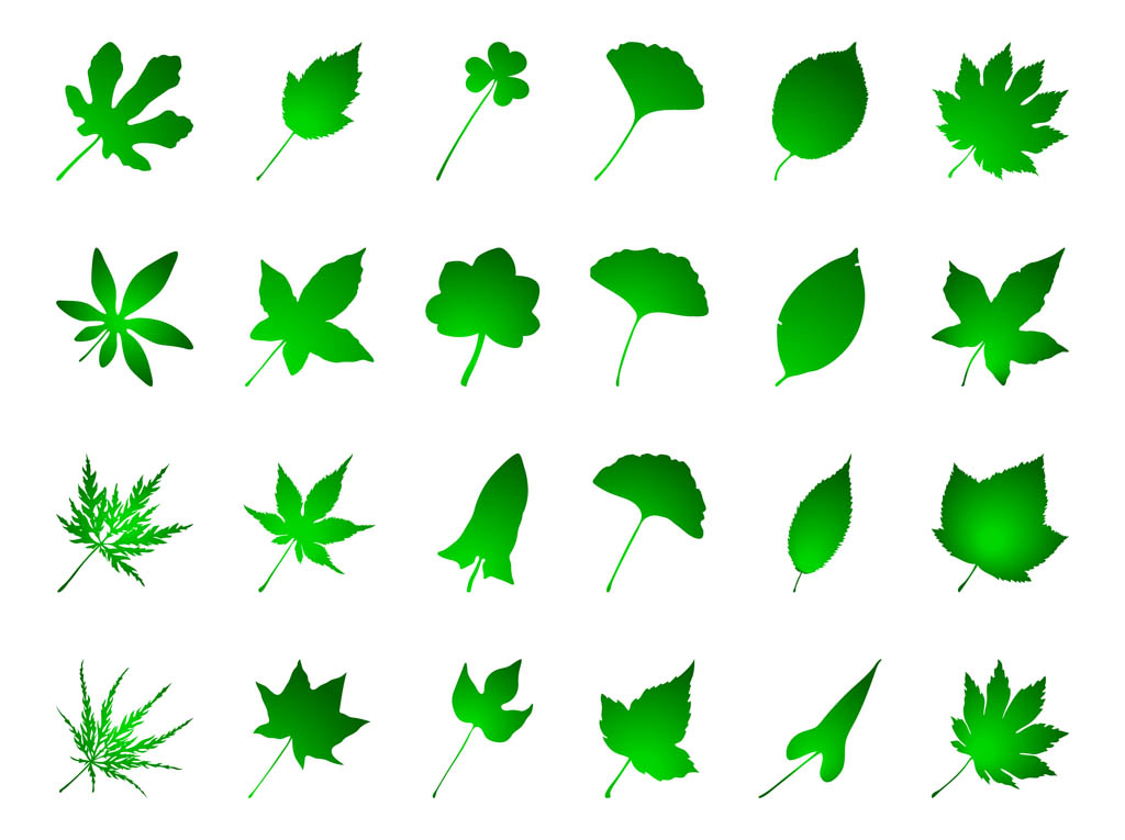 Green Leaves Set