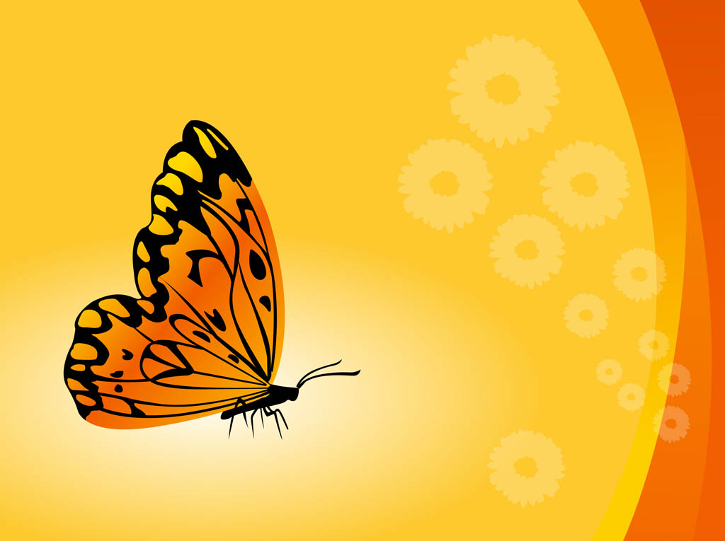 Butterflies PNG Images  Vectors and PSD Files  Free