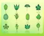 Free Leaf Vector Icons