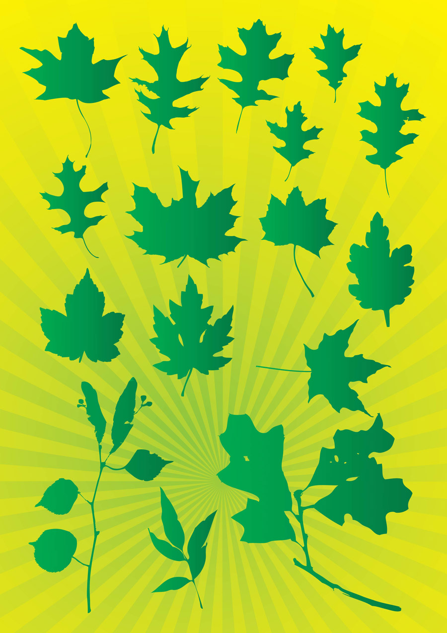 Leafs Vector Graphics