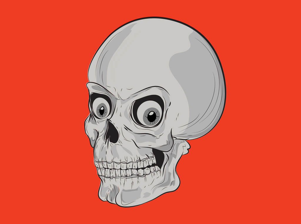 Cartoon Skull Vector Graphics