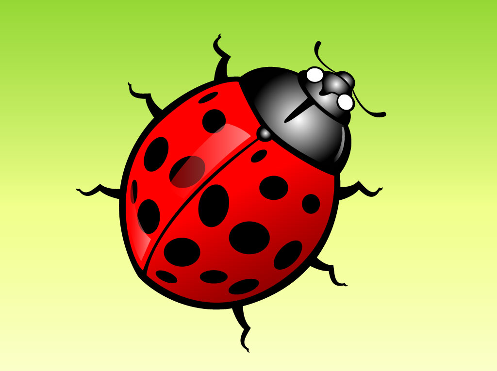 Lady Bug Cartoon