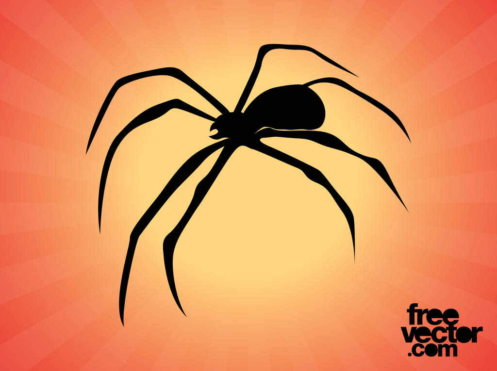 Spider Silhouette Graphics