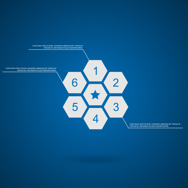 Honeycomb Infographic Vector