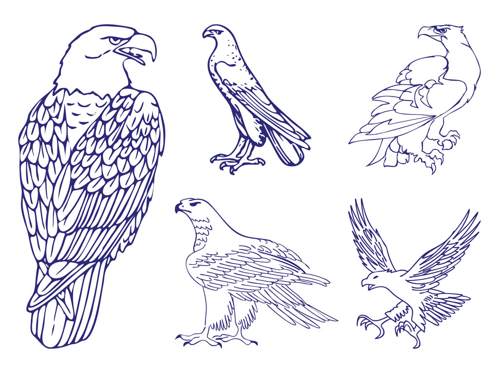 Eagle Graphics Set