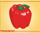 Red Pepper Vector