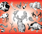 Wildlife Vector Graphics