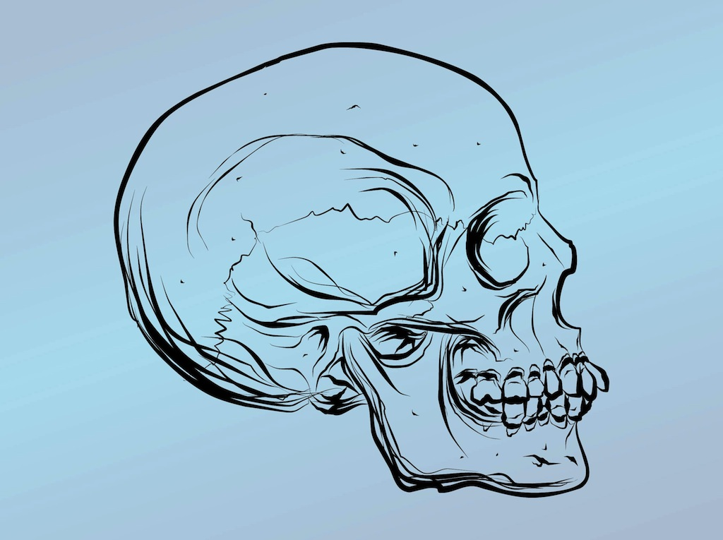 Skull drawing for Cool drawing websites free