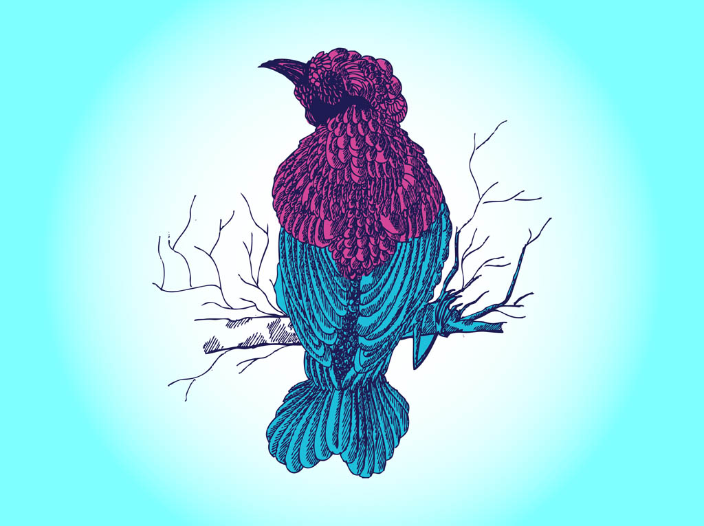 Bird Drawing Vector