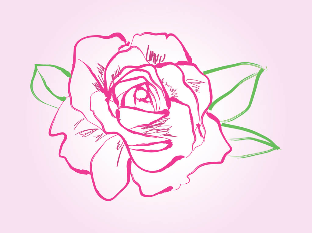 types of office flowers with Rose Drawing Vector on Money Bag With Indian Rupee Vector 25988 likewise How To Grow Spinach besides Care Of Sweet Peas furthermore Mic Cartoon additionally China Rose.