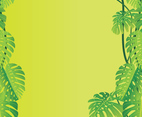 Jungle Leaves Vector Background