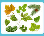 Tropical Leaves Vector Frame Vector Art Graphics Freevector Com Free download 62 best quality tropical leaf drawing at getdrawings. tropical leaves vector frame vector art