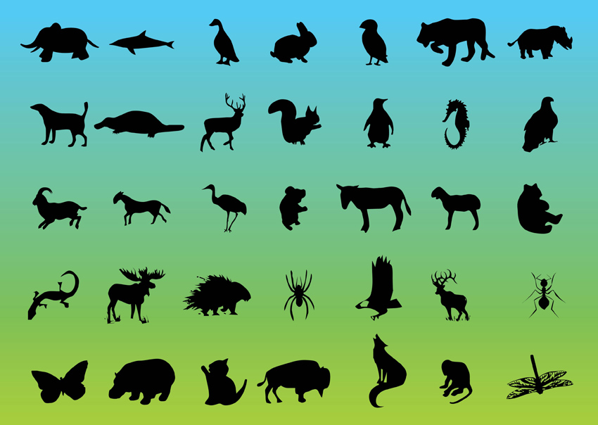 Free Wildlife Pictures Wildlife Vector