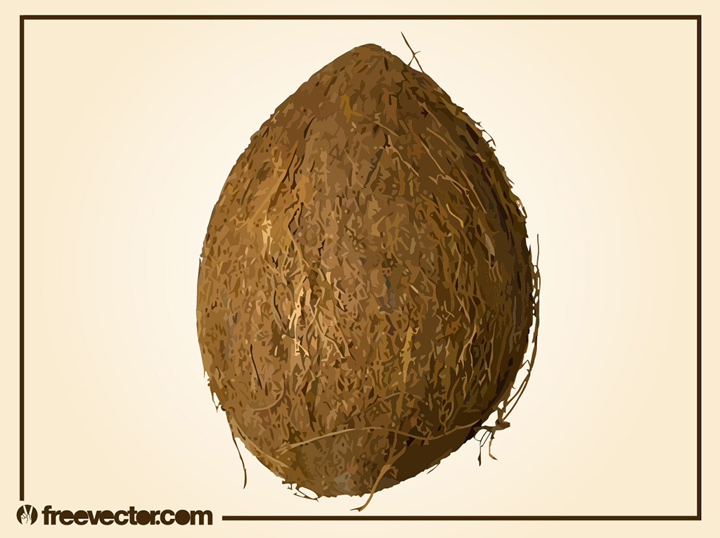 Coconut Vector 2