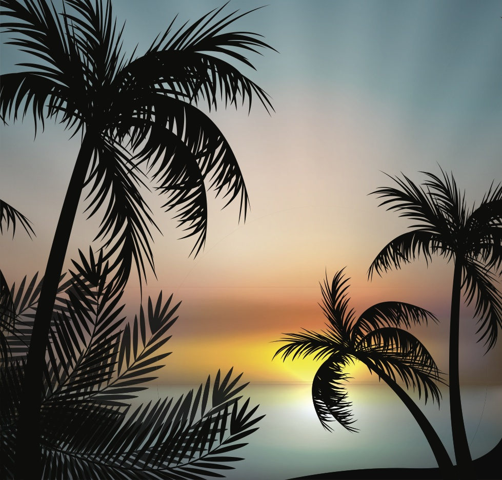 Summer Sunset Vector Background
