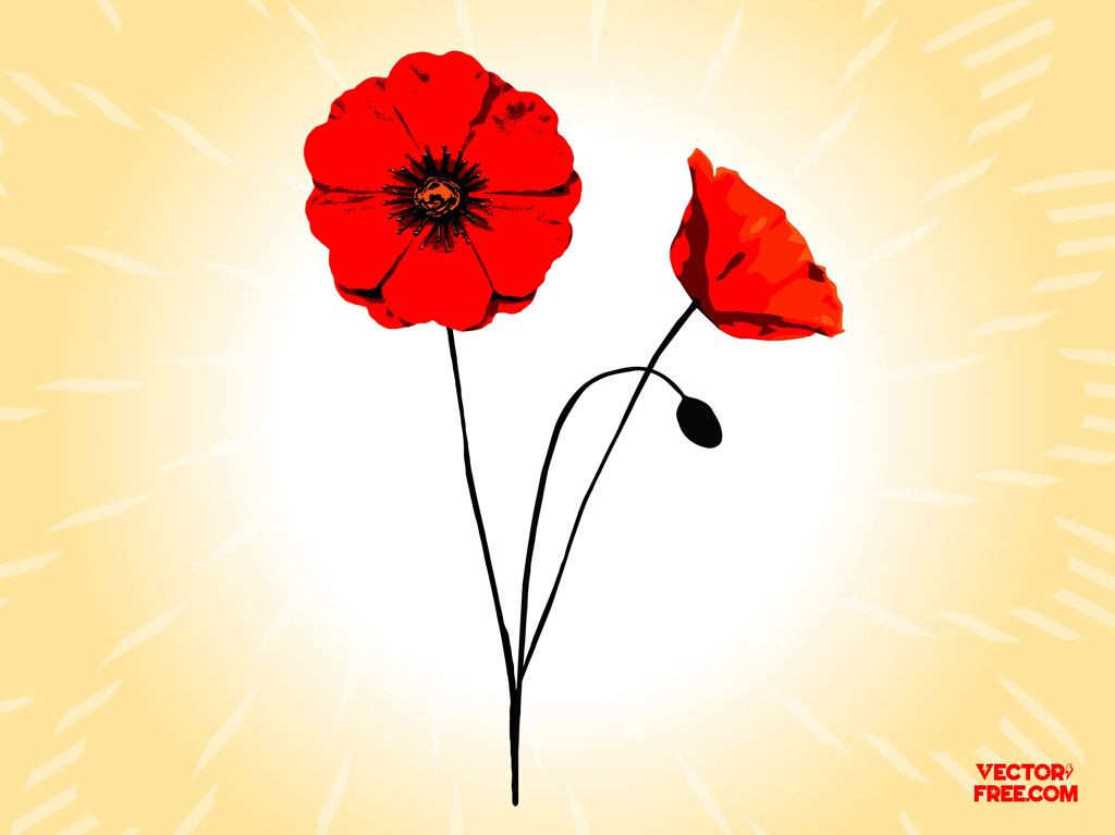 Poppy flowers vector art graphics freevector poppy flowers mightylinksfo
