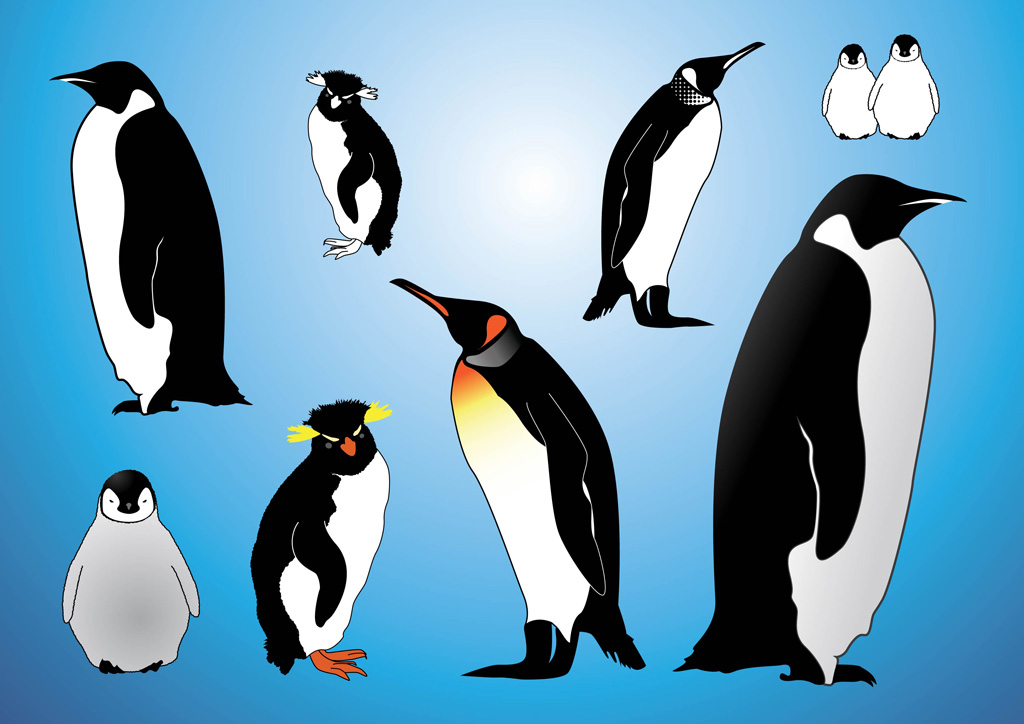 Penguins Vectors