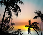 Sunset Vector with Palm Trees