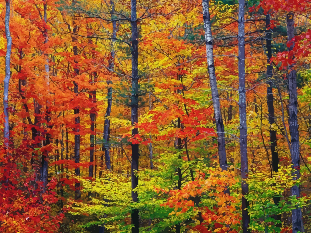 Autumn Nature   Design Freebies   World s Largest Collection of Design