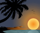 Sunset On Beach Graphics