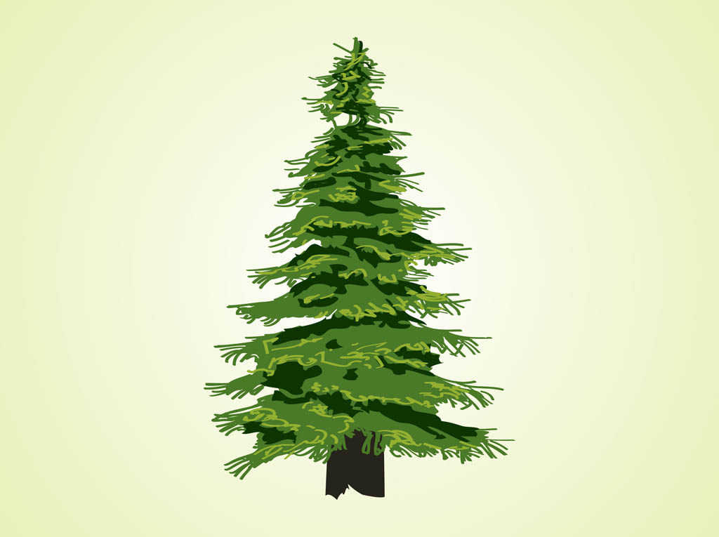 evergreen tree vector vector art   graphics freevector com vector images of pine trees vector pine tree images