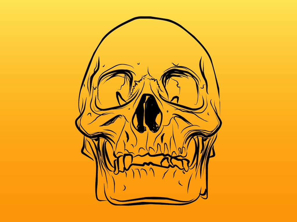 Skull Outlines Vector