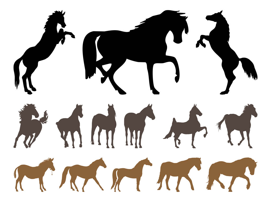 horse silhouettes free vector - photo #1