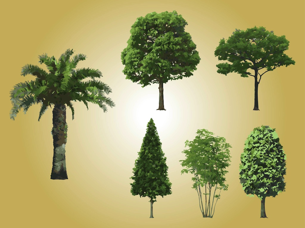 Realistic Tree Vectors