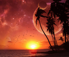 Exotic Sunset