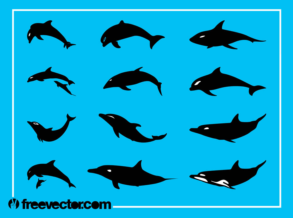 Dolphins Silhouettes Graphics