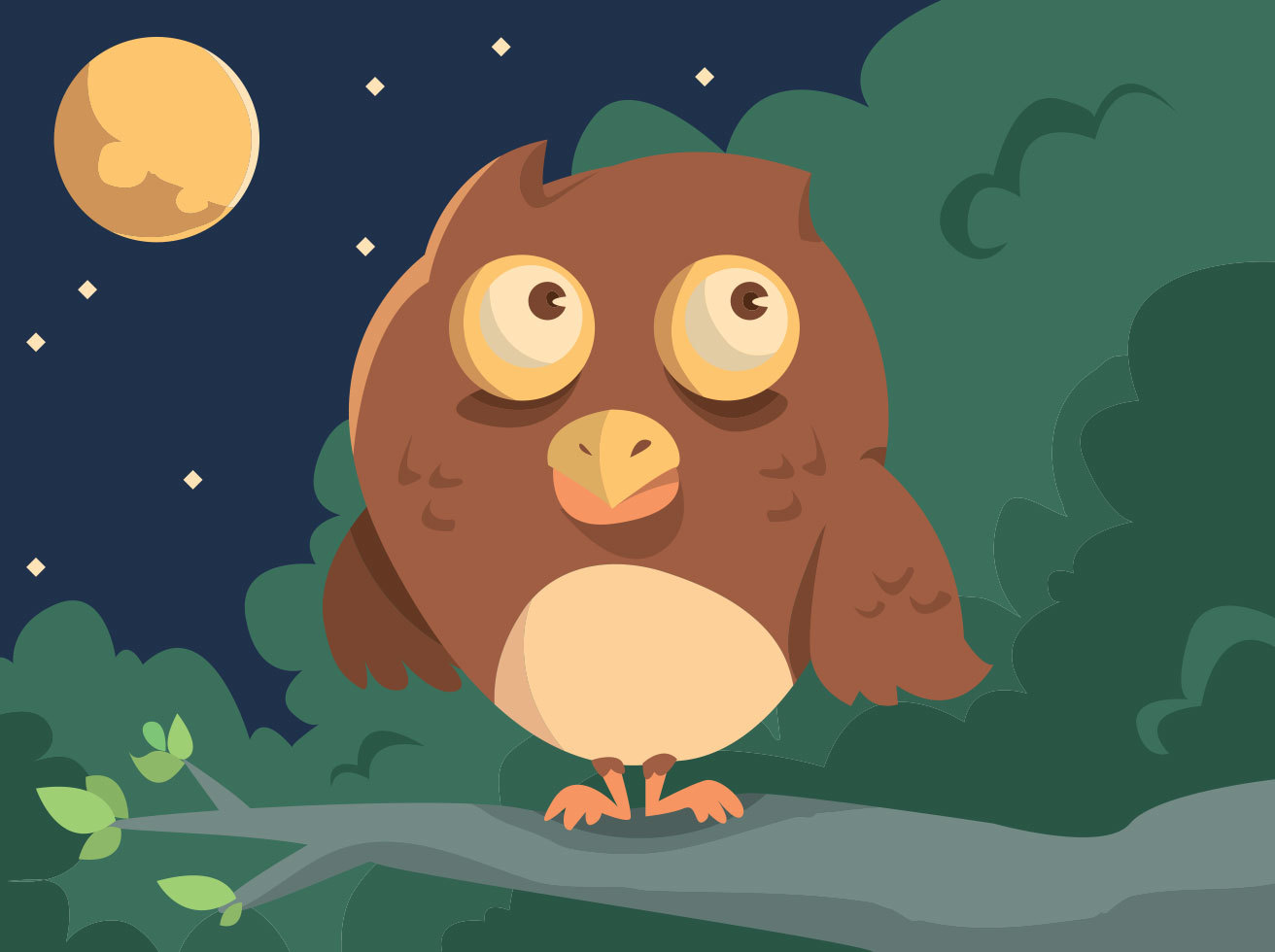 Cartoon Owl Vector Design