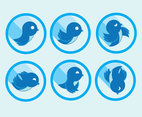 Twitter Bird Icons Vector