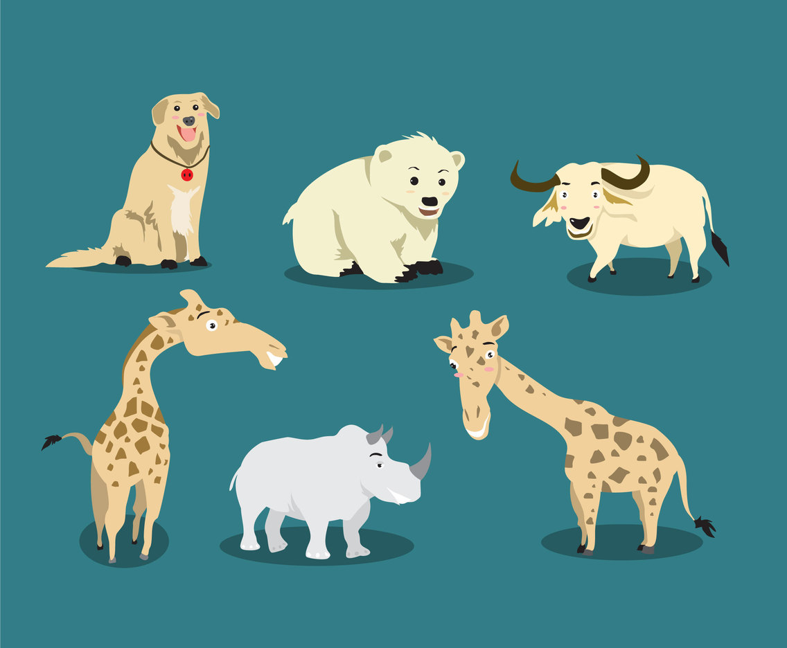 Cartoon Animals Collections Vector