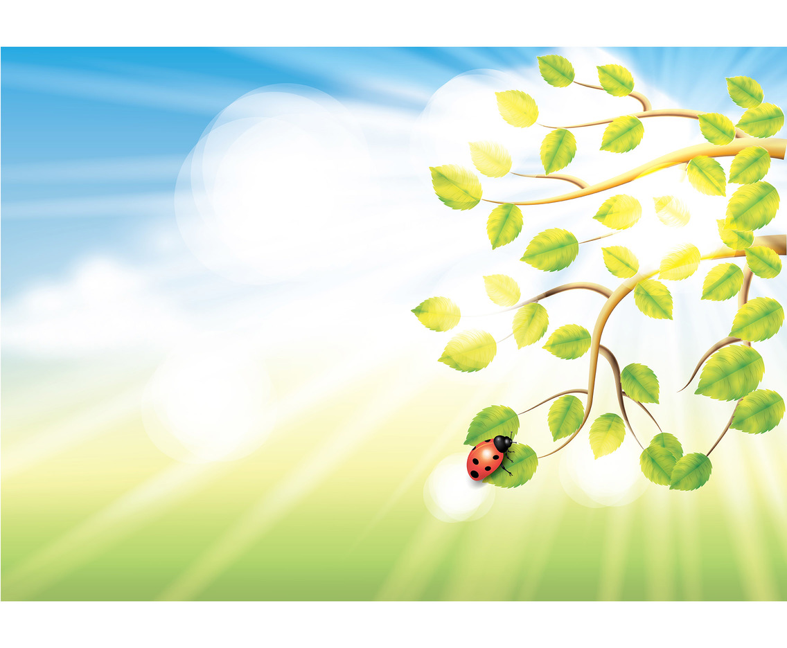 Spring Background Vector 4