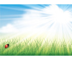 Spring Background Vector 3