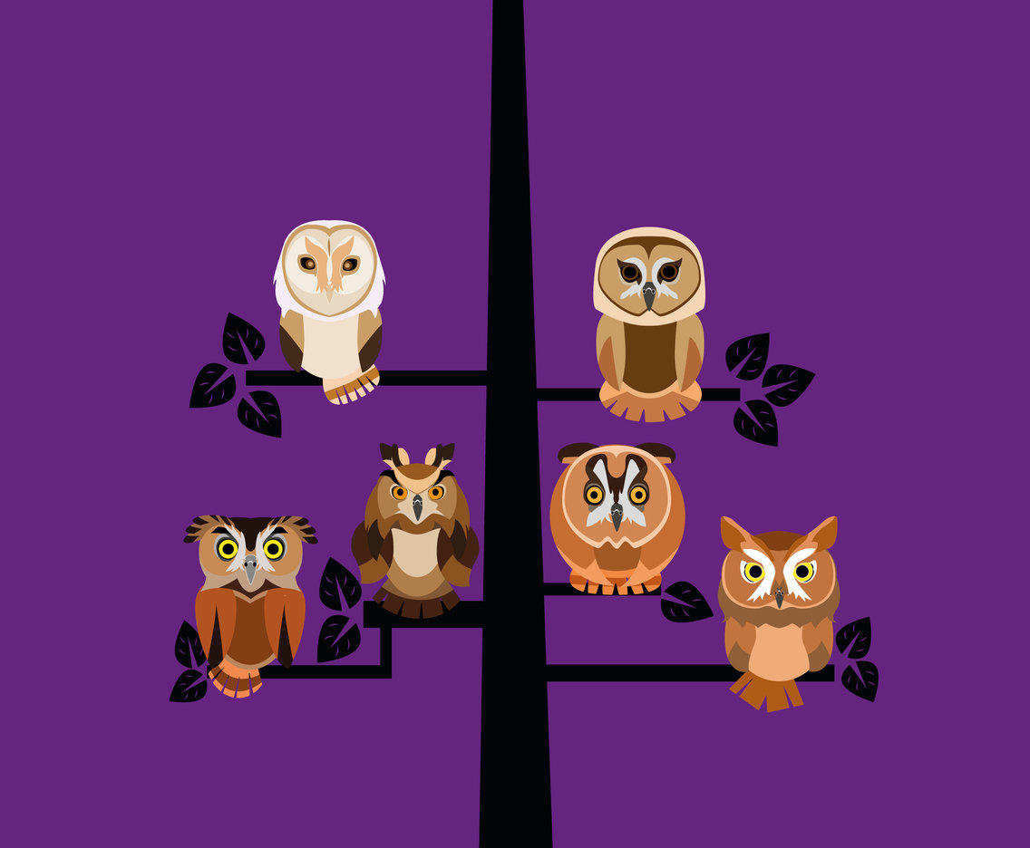 Owls on a Tree Vector