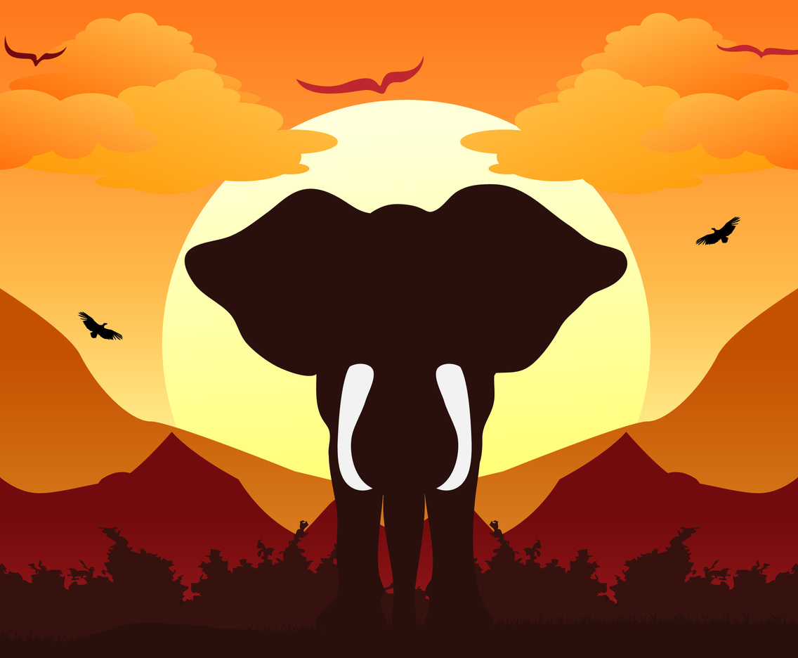 Elephant silhouette background sunset