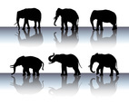 Elephant Silhouette Vector Set