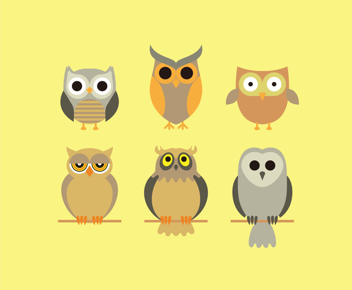 Cartoon Owls Collection Vector