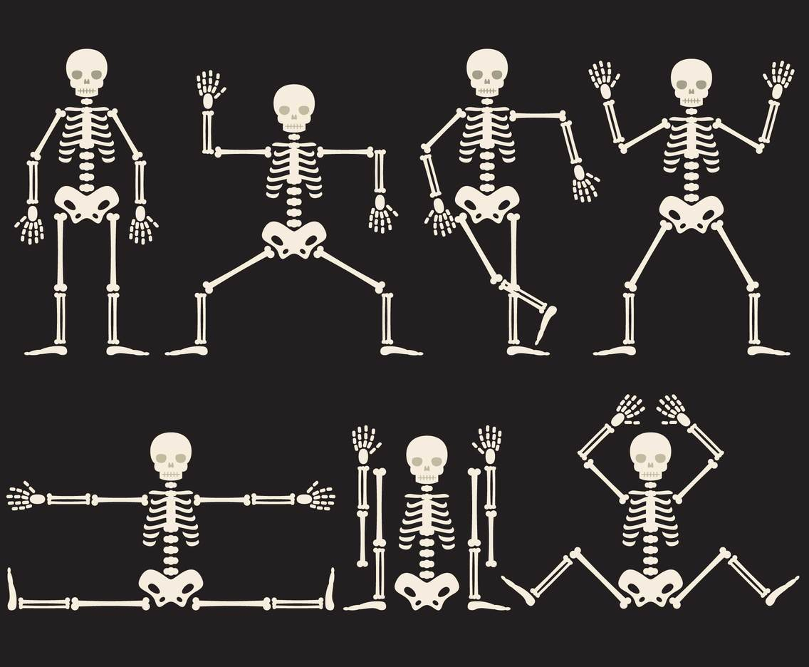 Cartoon Skeletons