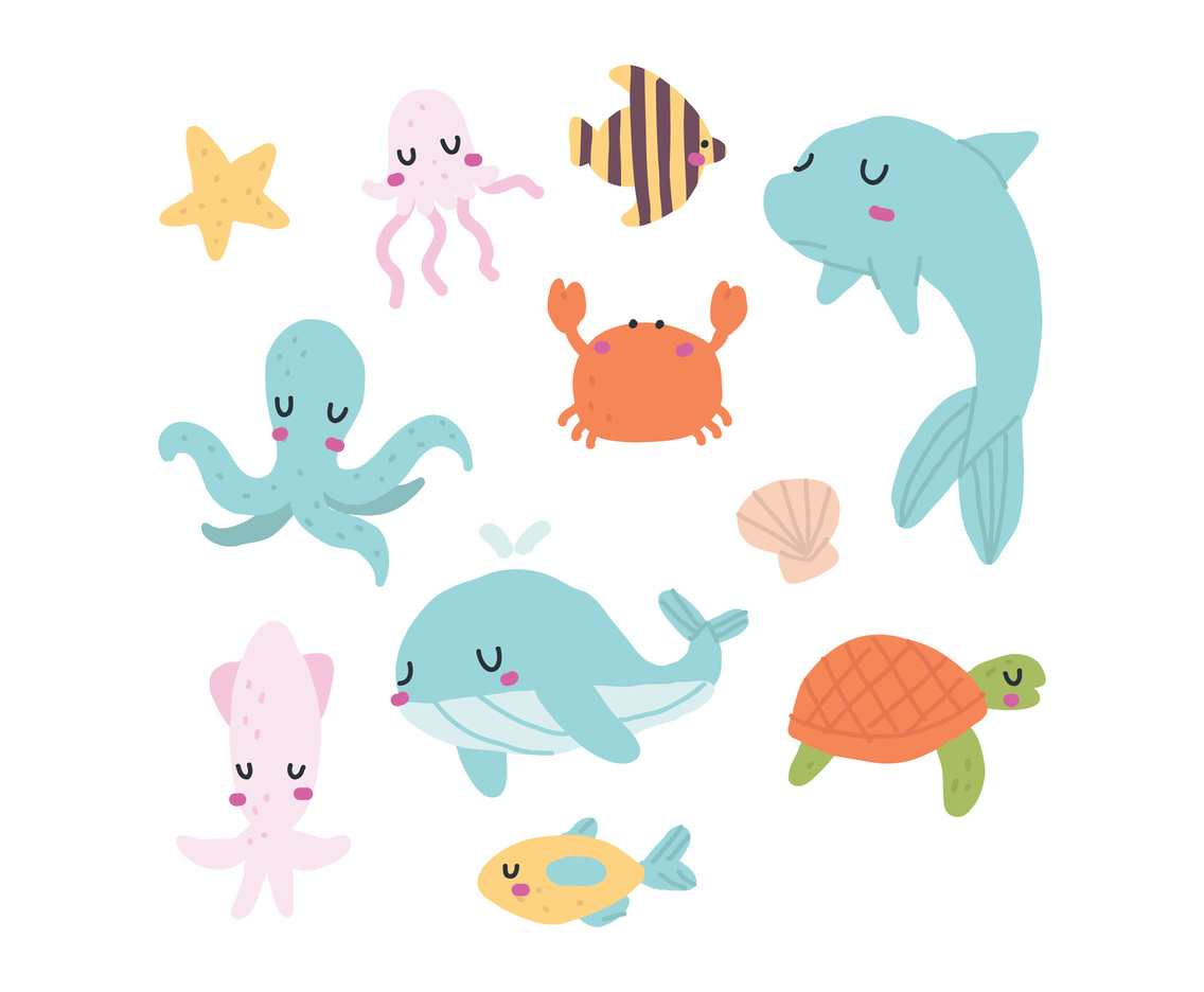 Cute Animals from Sea
