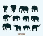 Illustration Of Elephant Silhouettes