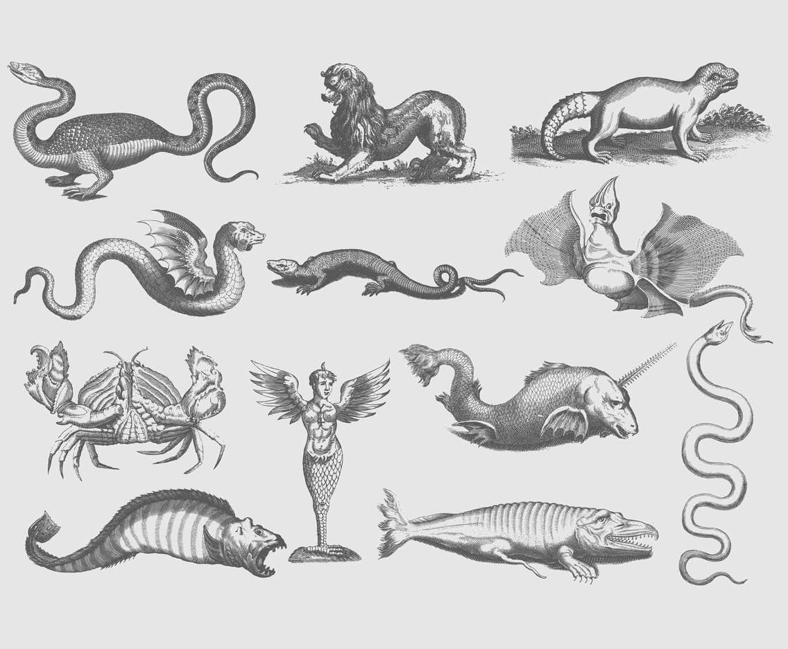 Ancient Illustrations Of Creatures