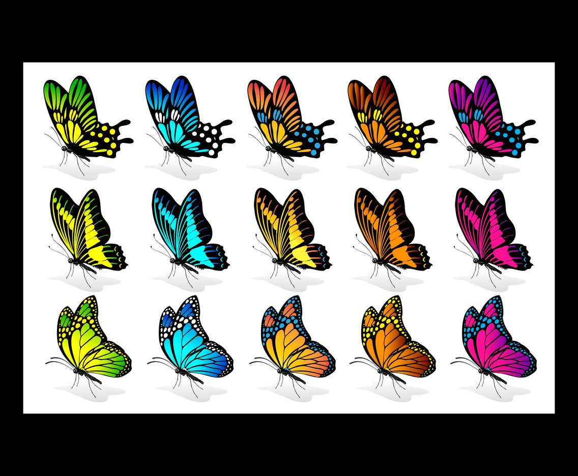 Beautiful Butterfllies vector set