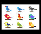 Kids Cartoon Birds Simple Design