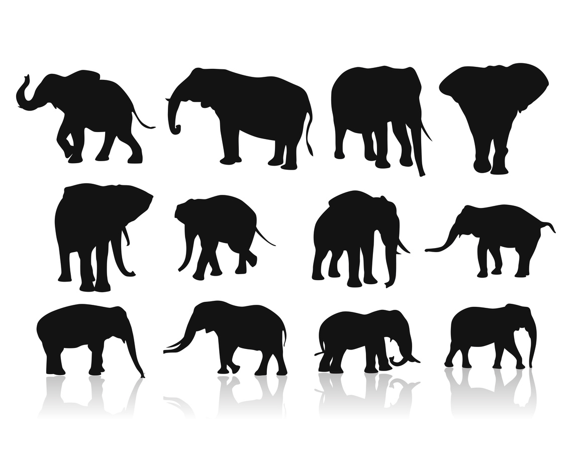 Vector Of Elephants silhouettes