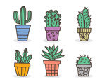 Hand Drawn Cactus Collection Vector