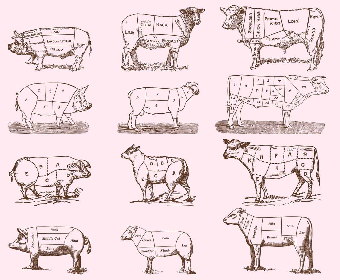 Vintage Meat Cut Illustrations