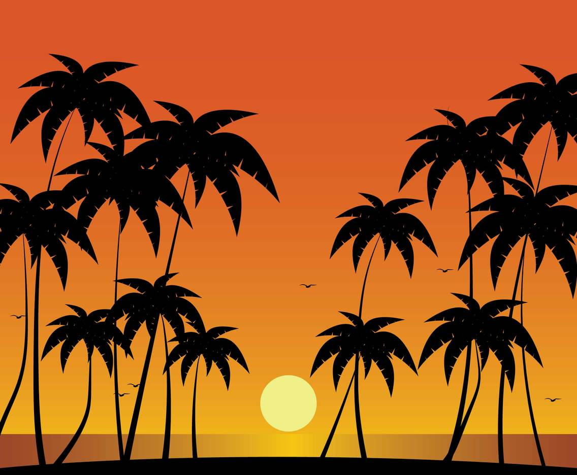 Free Palm Tree Silhouette Illustration